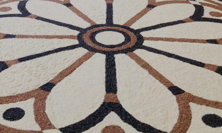 Mandala di Riso, un progetto che cresce