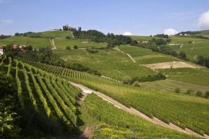 Alessandira, Monferrato e Lomellina