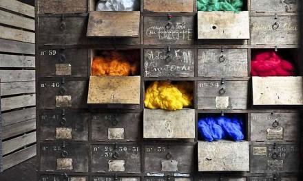 Riscoprire la lana, farne un'impresa, divulgarne la cultura