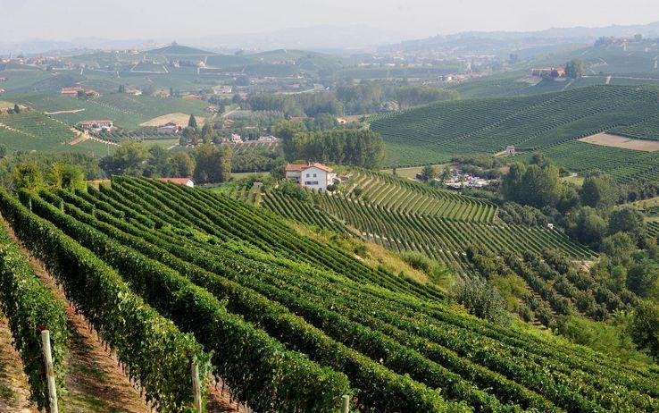 Il Monferrato è European Community of sport 2017
